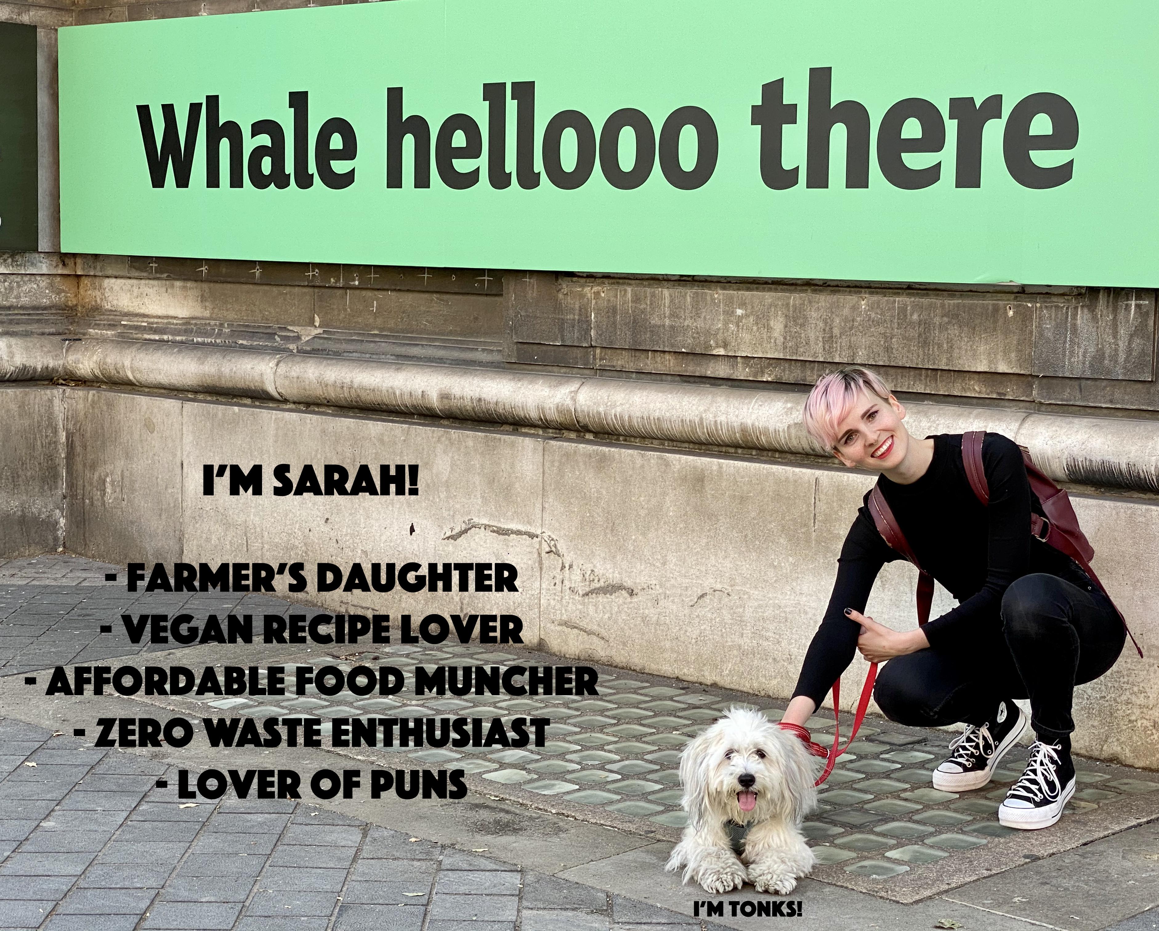 Whalehellothere